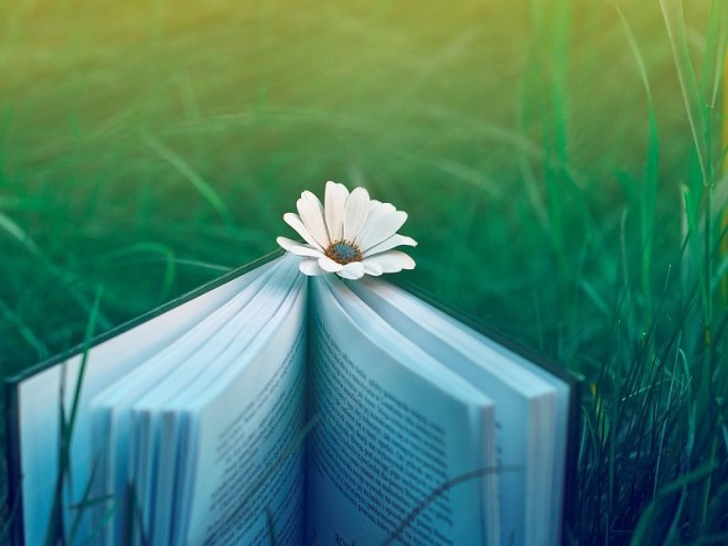 nature-books-flowers-pictures-hd-desktop-images-8038